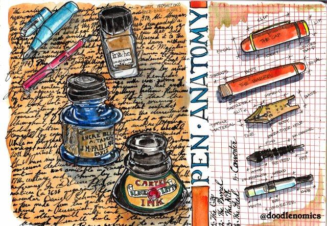 pen-anatomy-copy
